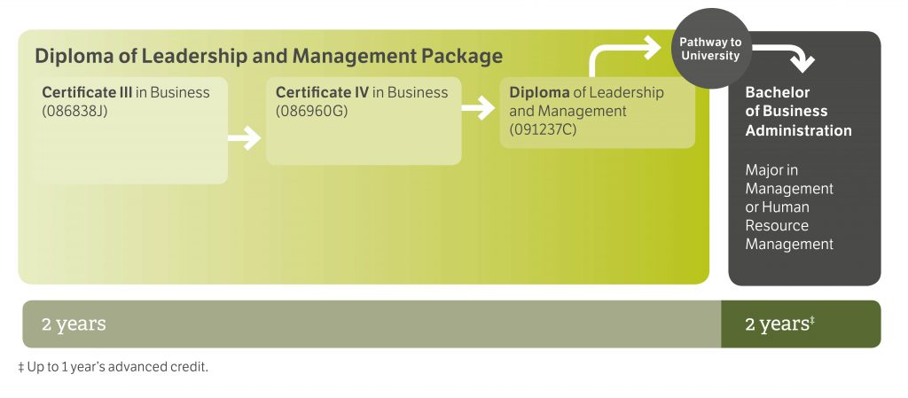2017-diploma-leadership-management-package-diagram_cropped